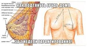 Как нарастить грудь
